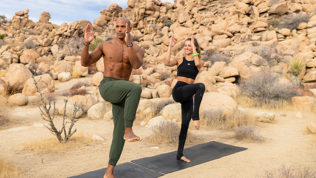 """""""Alo In The Wild"""" Online Video Workouts on Alo Moves"""